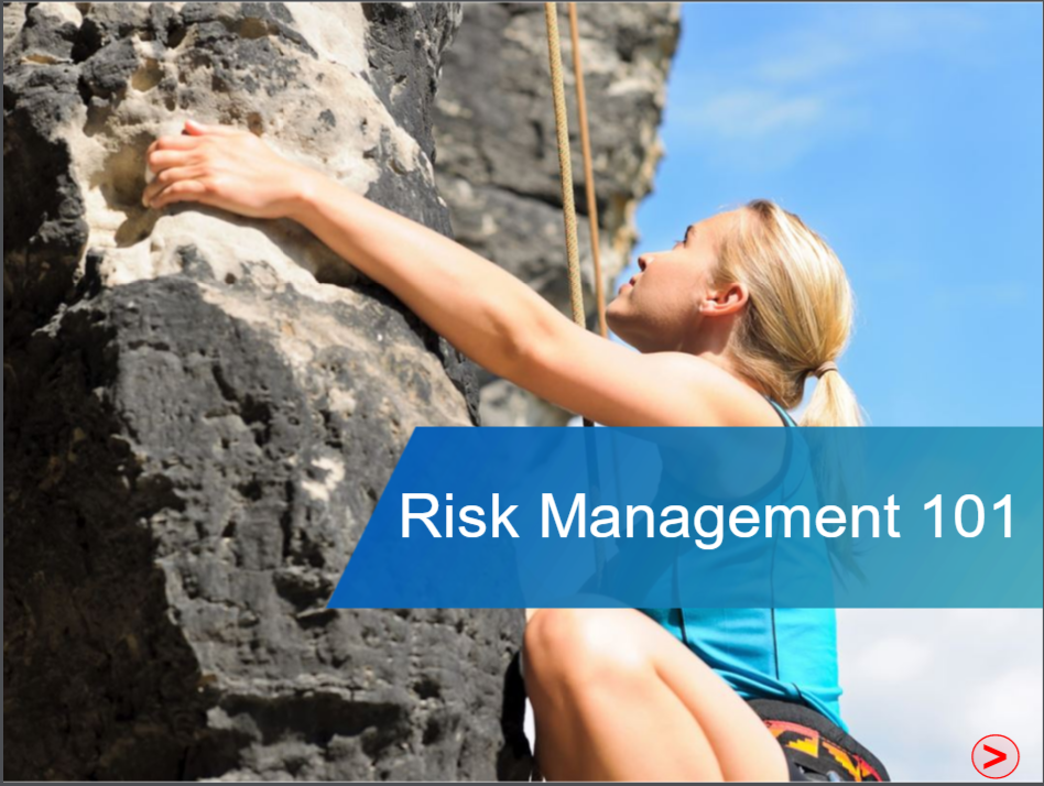Risk Management Demo Module